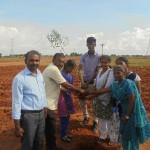 Tree Plantation Programme